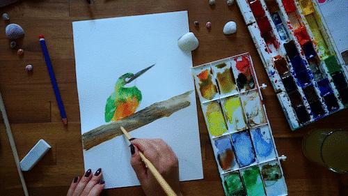 Exercise: Paint a bird